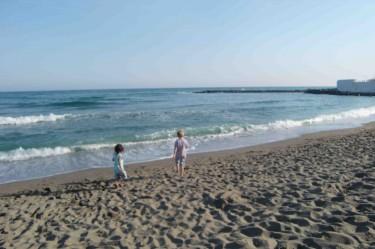 Fann massor av snäckor på stranden.