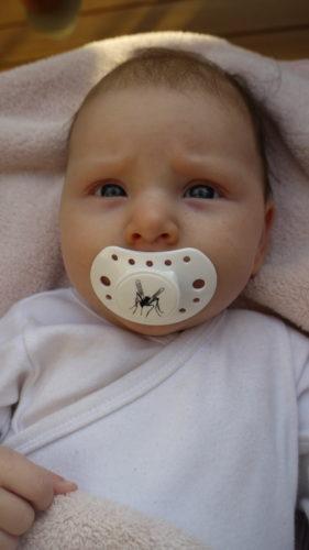 """Liv har sin fina napp från Vinton baby (http://www.vintonbaby.se/) med en liten mygga. Hennes norrlänska påbrå från mig får väl synas på hennes napp eftersom """"jag"""" inte syns någon annanstans :-)."""
