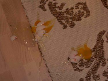 Gjorde potatisplättar av moset som blev över. Var så snurrig och darrig att jag tappade ägg efter ägg i golvet.