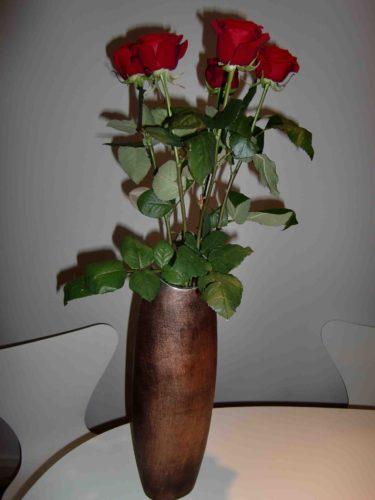 Peter kom hem med vackra röda rosor till mig. Vad har gjort för att förtjäna detta, inte städat i alla fall :-)