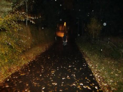 William och Liv gick i förväg. Lite kusligt när det är så dålig belysning längs med gångvägarna, men ändå mysigt.