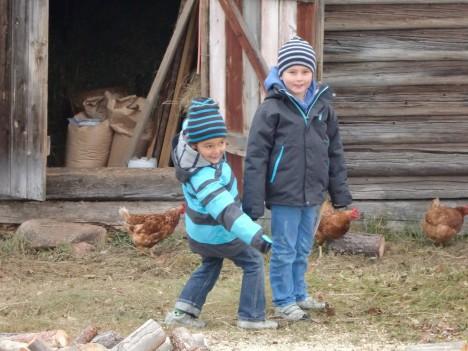 Efter troll, björnar och galenskap, begav vi oss alla till en bondgård. Efter grillningen dagen innan och besöket i ladugården här, så luktade vi allt annat än hallon. Våra kläder luktar fortfarande skit.