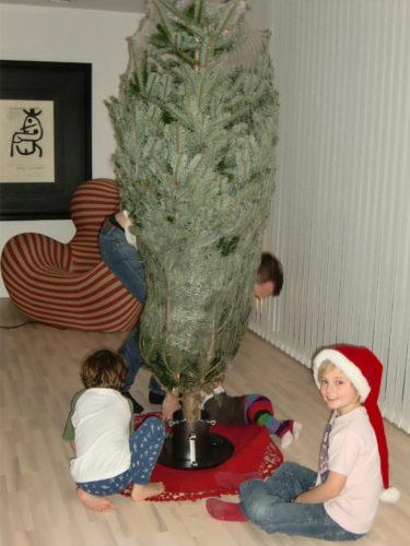 Vår nyinköpta Kungsgran fick sin plats i vardagsrummet. Alla barnen hjälpte Peter att få den på plats.