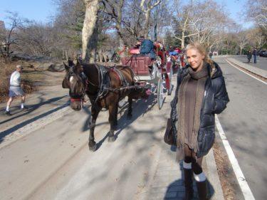 Man kunde även ta en tur med häst och vagn.