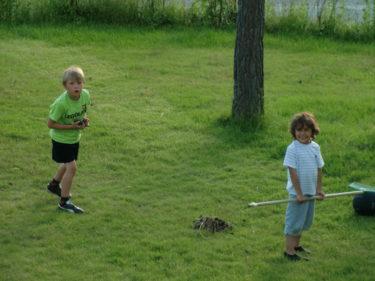 Gurra och Mio hjälpte Peter att kratta upp alla kottar från gräsmattan. Tio kronor fick de för arbetet och korv med bröd.