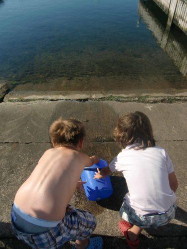 """Vi fick säkert tio krabbor som sedan hade """"krabbrace""""...."""