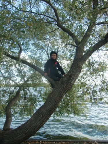 helt plötsligt hörde jag en röst uppe från trädet. Där satt Mio. Tur at han fortfarande hade cyckelhjälmen på sig, men en flytväst hade nog varit bättre.