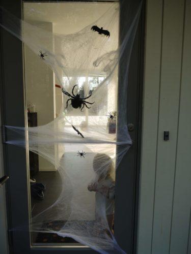Ännu mer spindelväv och spindlar på ytterdörren.