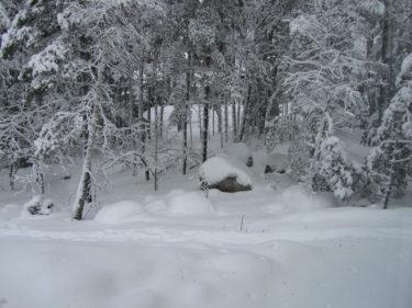 Utanför fönstret ligger är det vitt. Kunde knappt öppna dörren pga all snö.