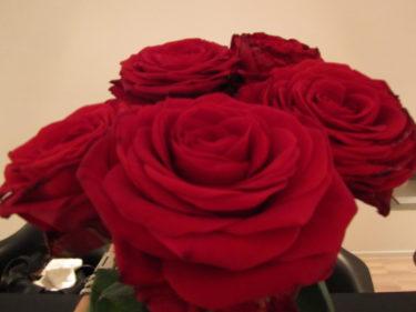 Röda rosor fick jag också dagen till ära av Peter.