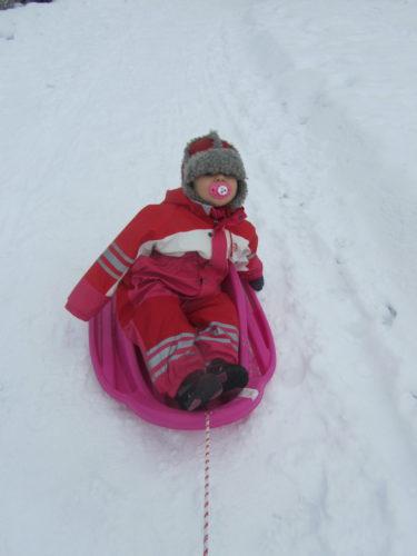 Livis fick åka i sin älskade pulka till förskolan. Om hon fick bestämma skulle hon nog sitta i den hela dagen.