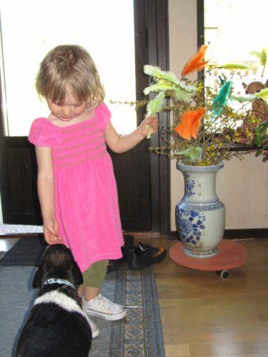 Liv tycker mycket om Bosse och Bimobo. Mamma och Gunnars hundar.