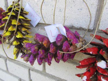 Liv hade målat en stor kotte lila med guldglitter.