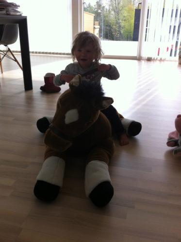 En helt ny häst för inte många kronor. Hon älskar den!