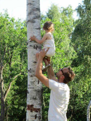 Liv klättrade upp i grannens träd.