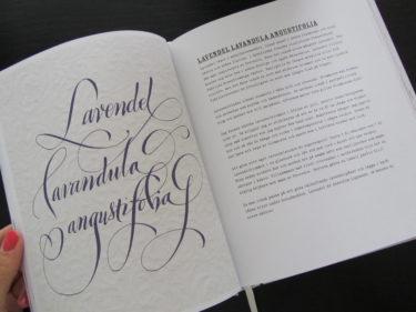 Lavendel är inte bara vacker och väldoftande...