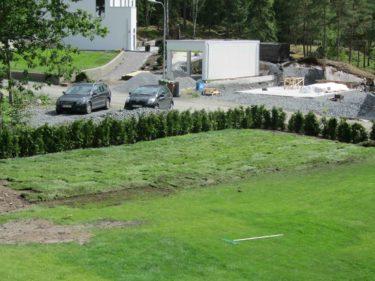 Här har Peter lagt ut nytt gräs och till vänster utanför bilden ska jag plantrea Rhododendron-buskar och så skulle jag gärna vilja ha syréner någonstans.