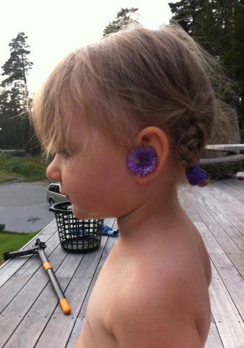Liv gillar att plocka blommor, särskilt mina planterade :-) De hon ger till mig brukar jag sätta bakom örat. Hon gjorde också det, men i :-) .